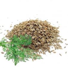 Семена укропа. Вес 50 гр.