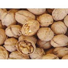 Грецкий орех в скорлупе крупный. Вес 1 кг. Чили